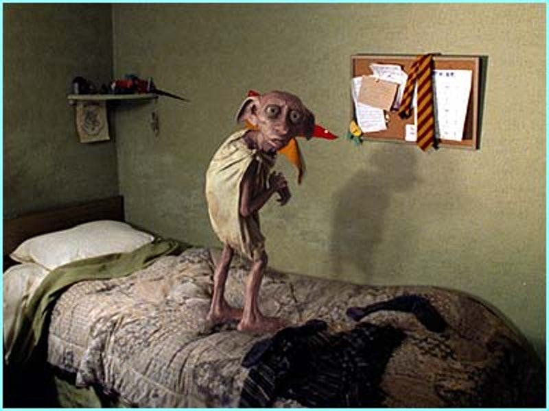 Dobby on bed.jpg?ixlib=rails 2.1