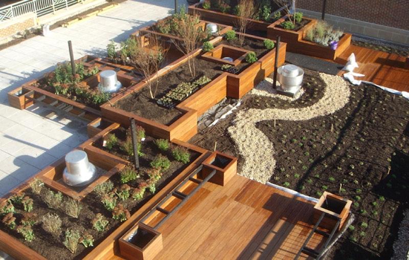 Roofgarden.jpg?ixlib=rails 2.1