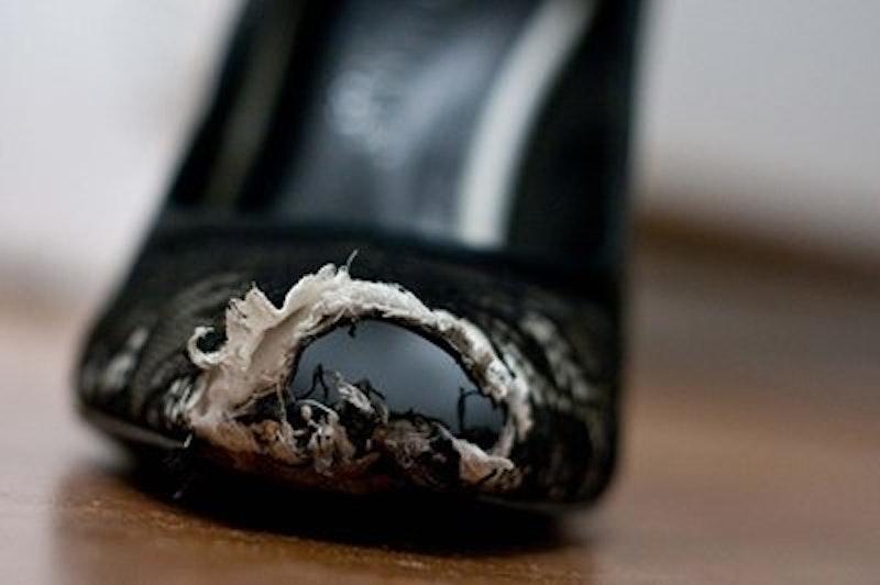 Rsz shoe chew.jpg?ixlib=rails 2.1