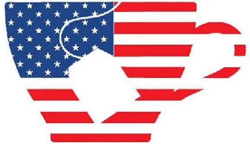 Tea party logo2010.jpg?ixlib=rails 2.1