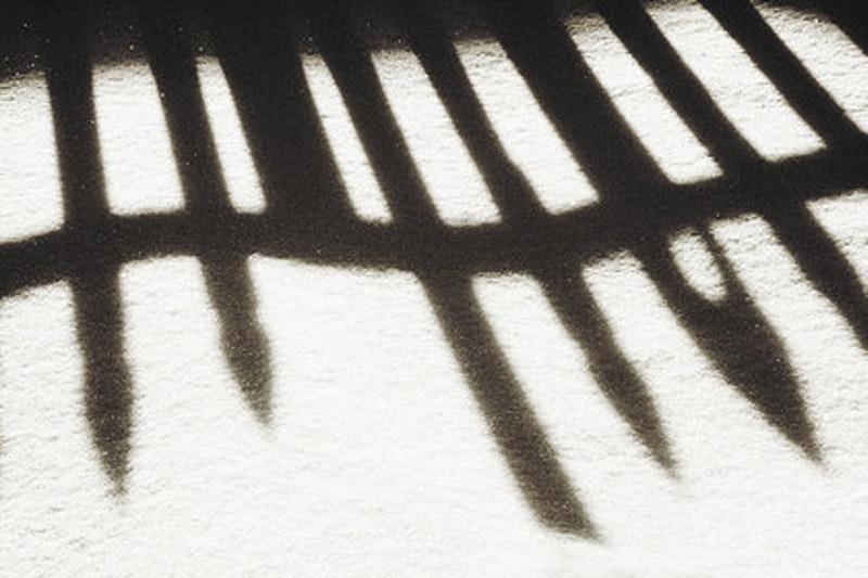 Rsz fence shadow.jpg?ixlib=rails 2.1