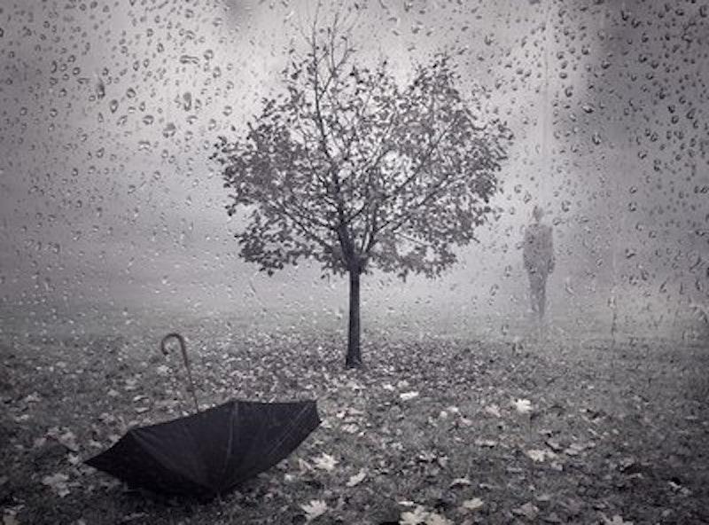 Rsz autumn rain.jpg?ixlib=rails 2.1