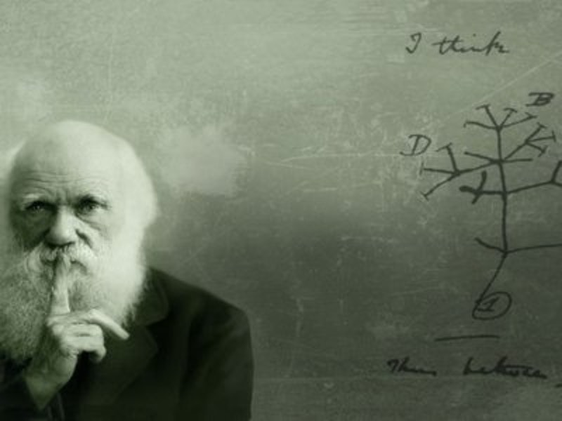 Rsz charles darwins theory of evolution still evolving 650x365.jpg?ixlib=rails 2.1