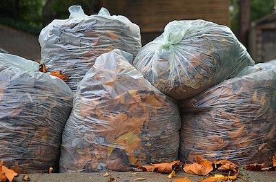 Leaf bags.jpg?ixlib=rails 2.1