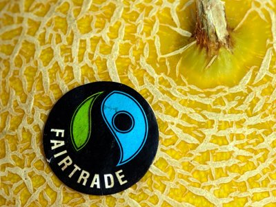 Rsz galia melon  fairtrade 014.jpg?ixlib=rails 1.1