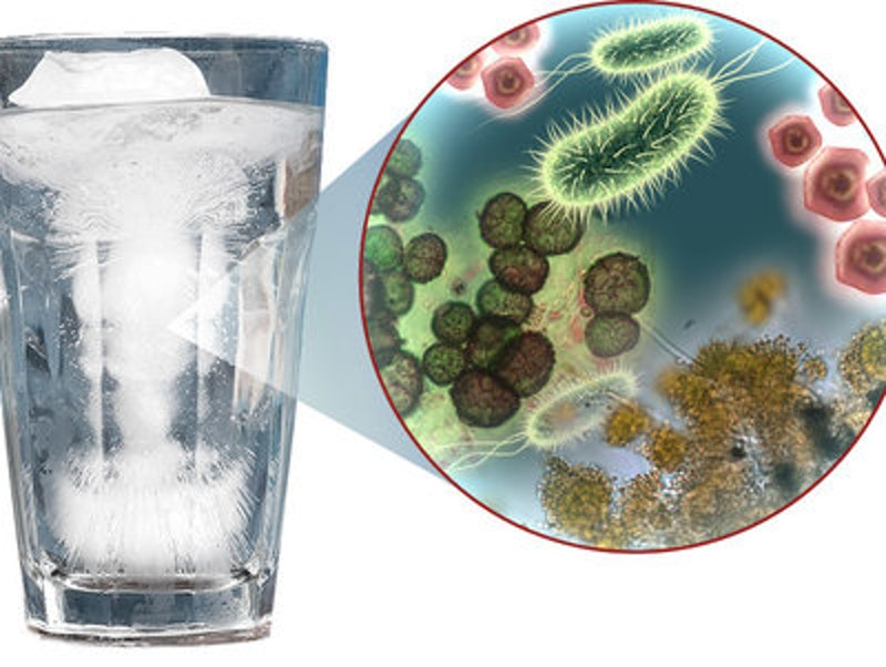 Rsz ice water with germs.jpg?ixlib=rails 2.1
