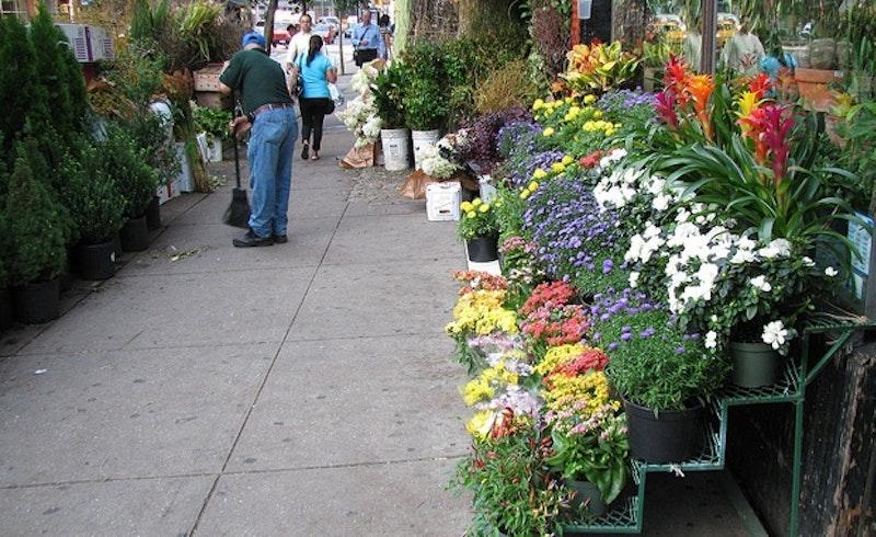 Flower district new york.jpg?ixlib=rails 2.1