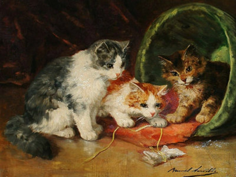 Rsz three kittens playing.jpg?ixlib=rails 2.1