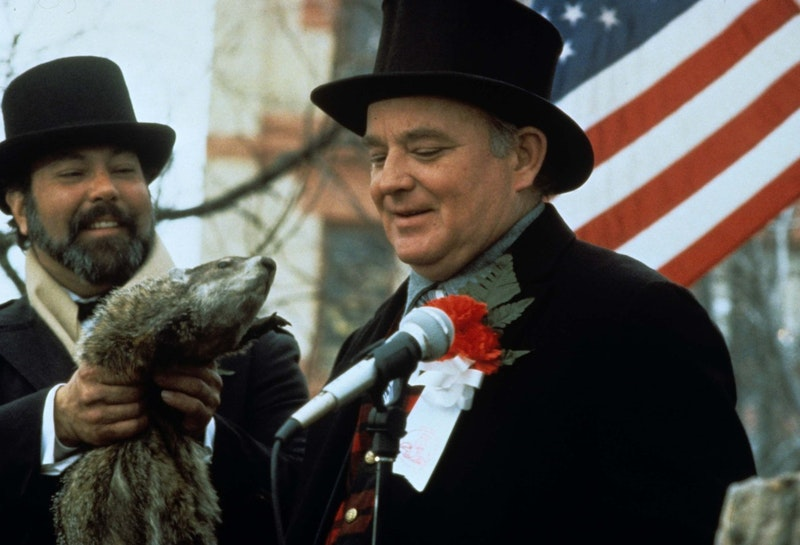Groundhog day brian doyle murray and the groundhog.jpg?ixlib=rails 2.1
