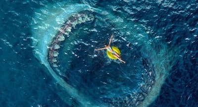 The meg warner bros 530x303.jpg?ixlib=rails 2.1