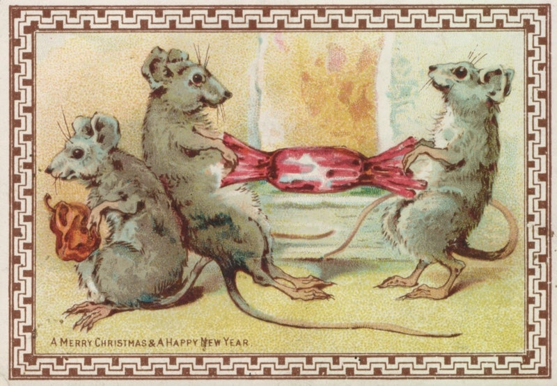 4. mice pulling cracker.jpg?ixlib=rails 2.1