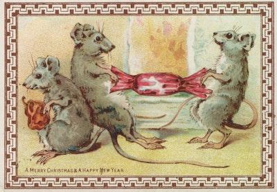 4. mice pulling cracker.jpg?ixlib=rails 2.1