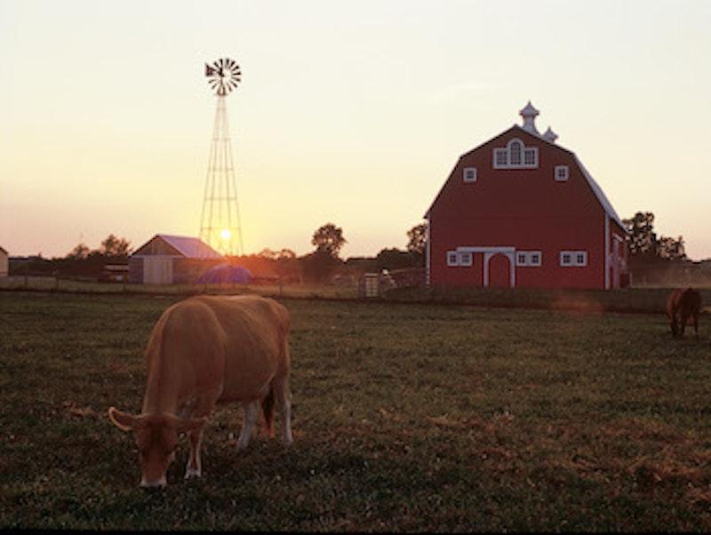 Prophetstown farm.jpg?ixlib=rails 2.1