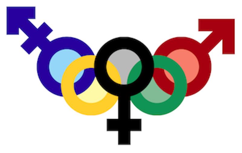 Peyton ayers trans olympics.png?ixlib=rails 2.1
