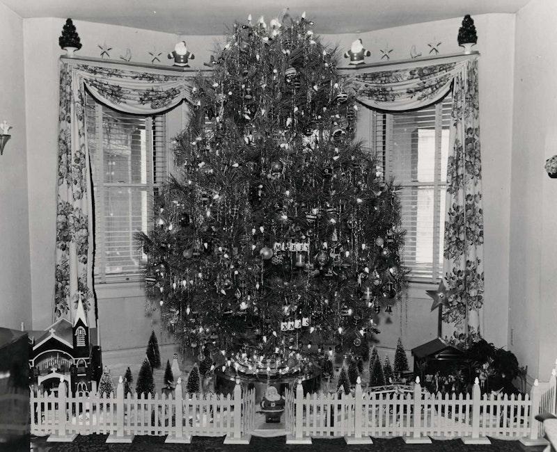 1950grandpas tree.jpg?ixlib=rails 2.1