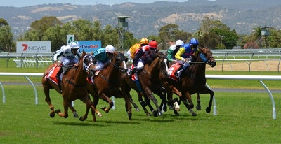 Horse racing 358907 1280.jpg?ixlib=rails 2.1